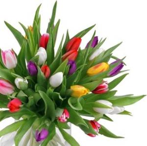 Цветы на 8 марта в красноярске букет из фруктов с доставкой на дом